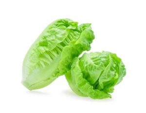 Lettuce Baby Cos - Twin Pack